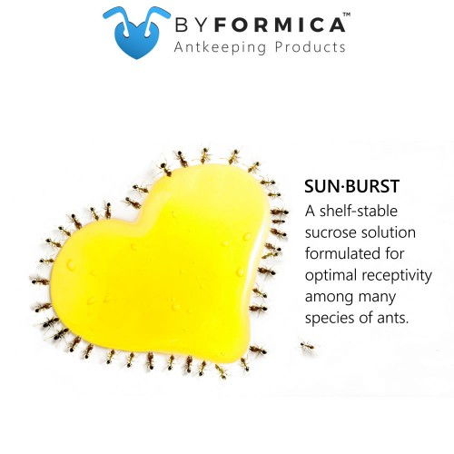 byFormica Sunburst Ant Nectar - 240 mL Bottle